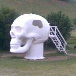 Skull Sauna