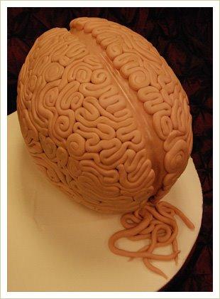 Anatomie Kuchen 02