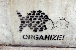 Zorganizować!