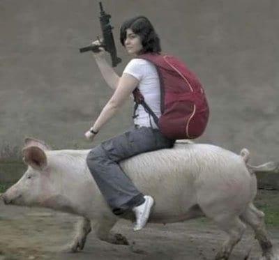 Der Krieg gegen die Schweinegrippe ist eröffnet