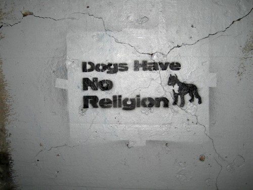 Dogs have no Religion