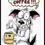 Make me more coffee!