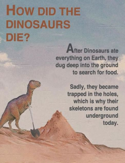 How did the Dinosaurs die?