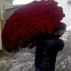 Ein kleiner Strauss Rosen für die Liebste