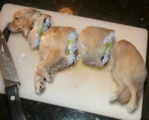 Der neuste Sushi Trend