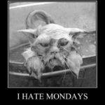 Ben pazartesi nefret ediyorum