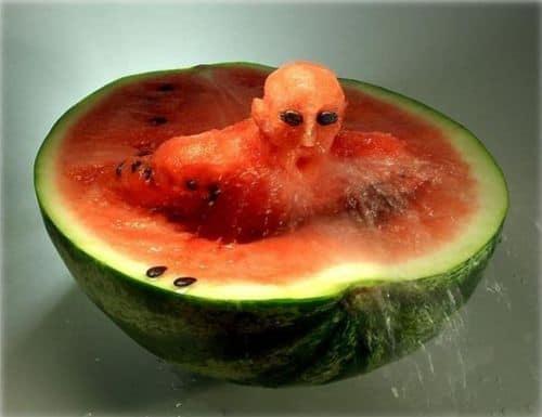 Neulich beim Wassermelonen Essen