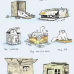 Guide Boîte de chat de Simon