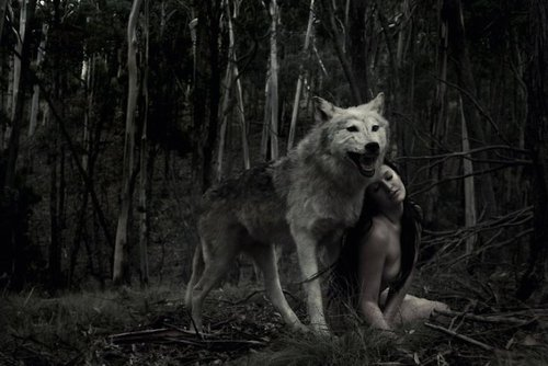 Under the full moon: The Night of the Wolves