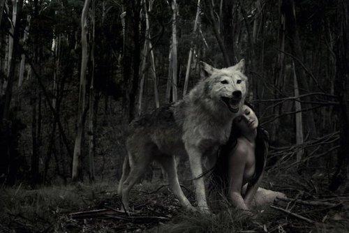 Unter dem Vollmond: Die Nacht der Wölfe