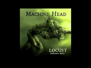 DBD: Locust – Machine Head