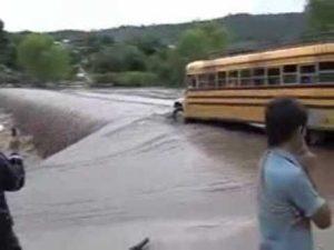 Der Busfahrer des Tages