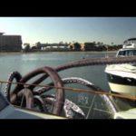 Sharktopus – Neuer Trailer
