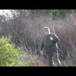 Rabbit vs. Hunter – Remi Gaillard