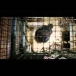 Rise of the Planet of the Apes – Nya Trailer