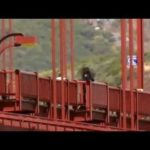 The Golden Gate Bridge Suicides