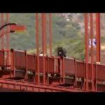 The Golden Gate Bridge Suicides