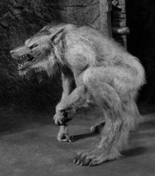 Vollmond und der Wolf ist auf der Jagd