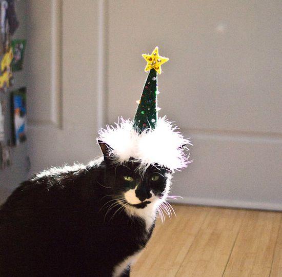 Hüte für Katzen - Cat Hats