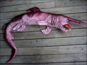 Der Koboldhai