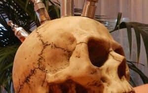 E-cigarette dans la forme du crâne: GisMod VV Vamp crâne