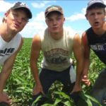 En Fresh Breath of Farm Air – Fresh Prince Parodie