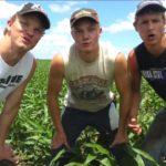 A Fresh Breath of Farm Air – Fresh Prince Parodie