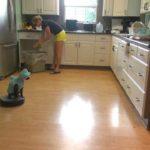 Katt i köket suger Haikostüm