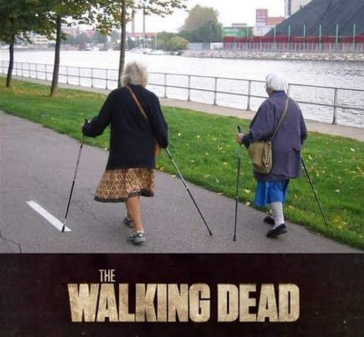 The Walking Dead: Real Life