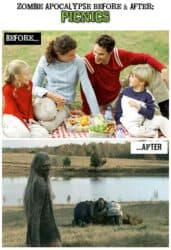 Zombie Apocalypse Before & After