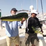 Seelöwe klaut Angler Fang – Sea Lion stealing Fish