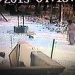 Katze attackiert Katzenhasserin