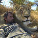 Kevin Richardson, Le Whisperer Lion