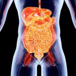 10 widerliche Fakten über den menschlichen Körper