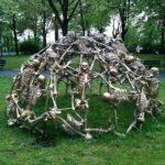 Skeleton Climber