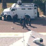 Polícia SWAT Elite contra um pug