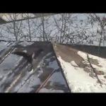 Krähe beim Rodeln – Sledding Crow