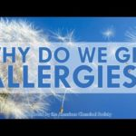 Warum bekommen wir Allergien? – Why do we get allergies?