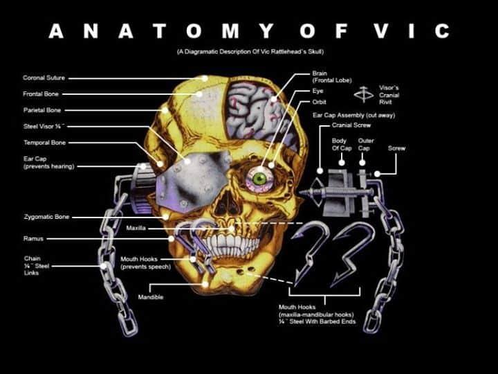Anatomy of Vic Rattleh...