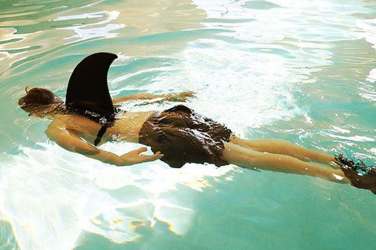 Hai Im Schwimmbad