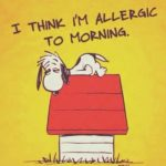 Allergic to Monday Morning