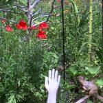 Slippery ekorre: Vaselin för att skydda mot mat tjuvar