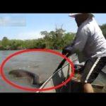 Brasilianische Männer finden fünf Meter lange Riesenschlange