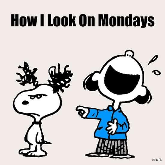 ¿Cómo me veo los lunes!