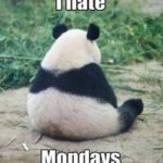 Ben pazartesi nefret ediyorum!