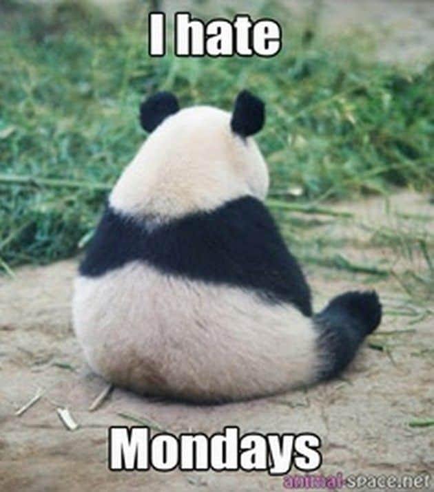 I hate Mondays!