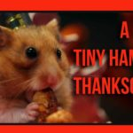 Een Tiny Hamster Thanksgiving