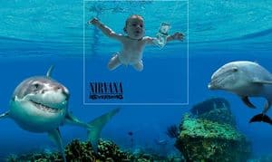 Nirvana - Nevermind rausgezoomt