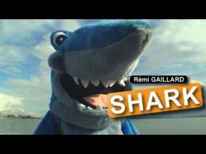 Remi Gaillard - Shark Attack