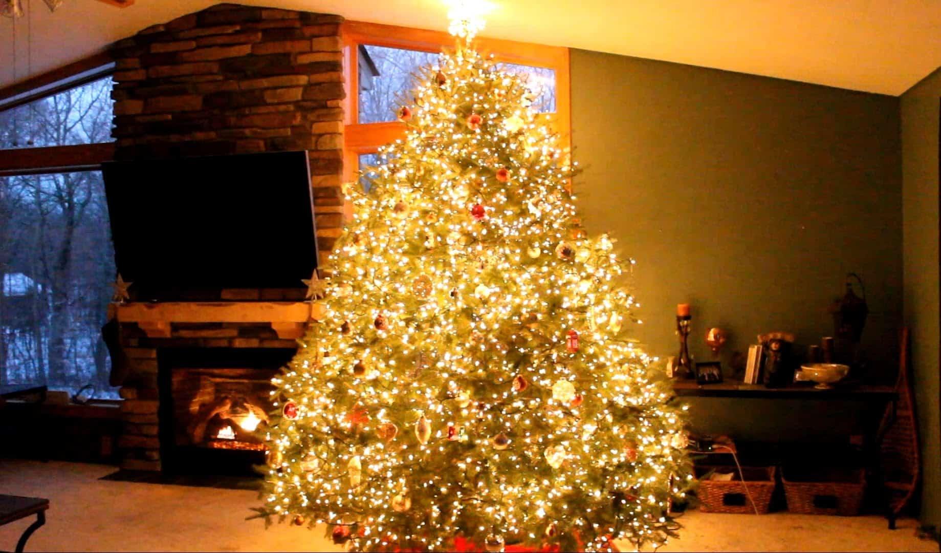 unglaubliche light show am weihnachtsbaum dravens tales. Black Bedroom Furniture Sets. Home Design Ideas